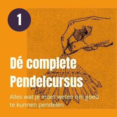 De complete pendelcursus